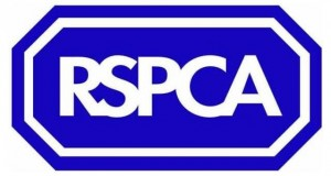 RSPCA: on the ball