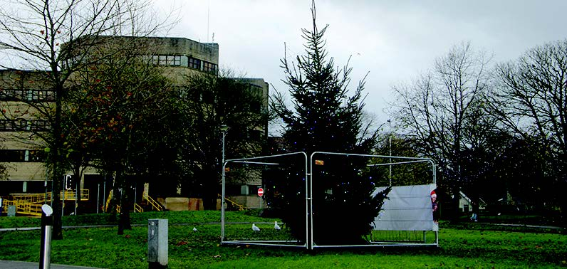 The town's Christmas tree: Dwarfed by its neighbours