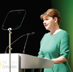 "Leanne Wood: ""People have been taken for granted for far too long"""