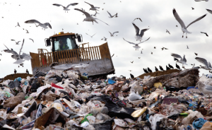 Zero aim: Landfills in Wales to be gone by 2030
