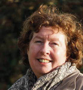 Surprised at level of public support: Helen Mary Jones