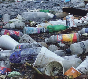 Lib Dems: Deposit charge would reduce litter