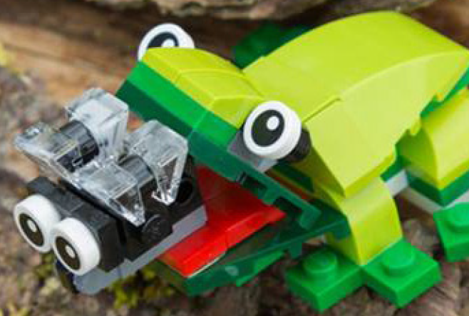 LEGO frog: Build your own this half term